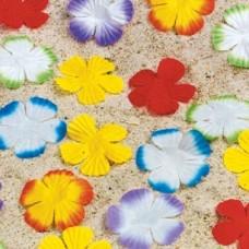 Žiedlapių konfeti (dideli)